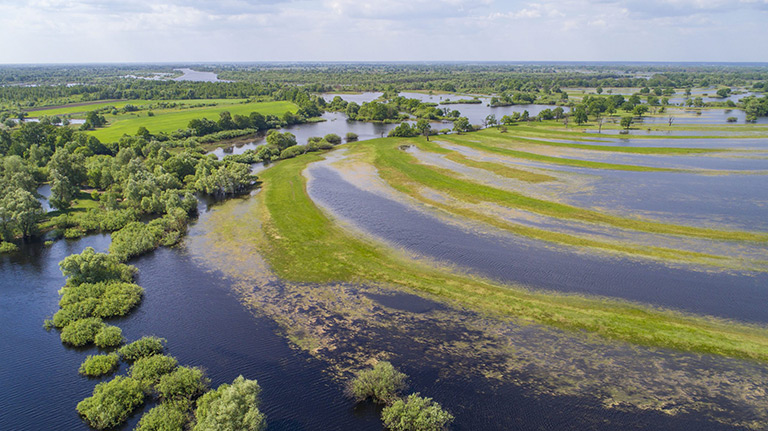 An aerial photo of the River Pripyat in Polesie, Belarus, and its surrounding floodplain meadows, wetlands and oxbow lakes. This is an extremely important site for migrating birds. Photo by Daniel Rosengren. Courtesy of the Endangered Landscapes Programme.