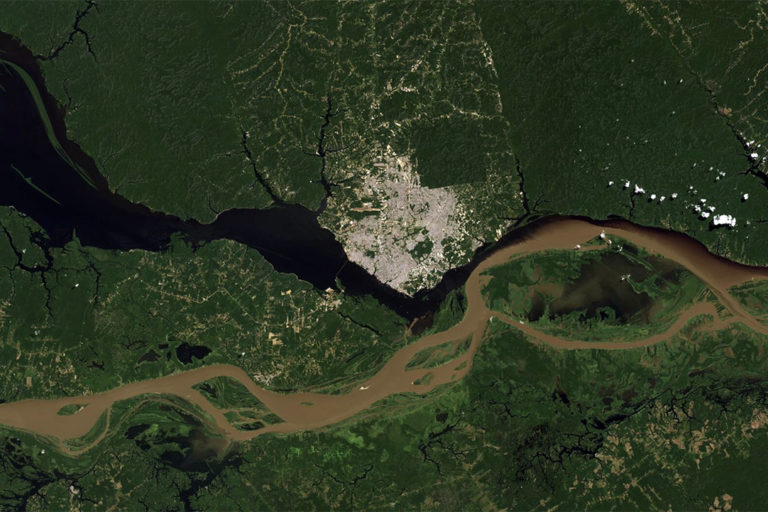 Manaus as seen from satellite. © Microsoft Zoom.
