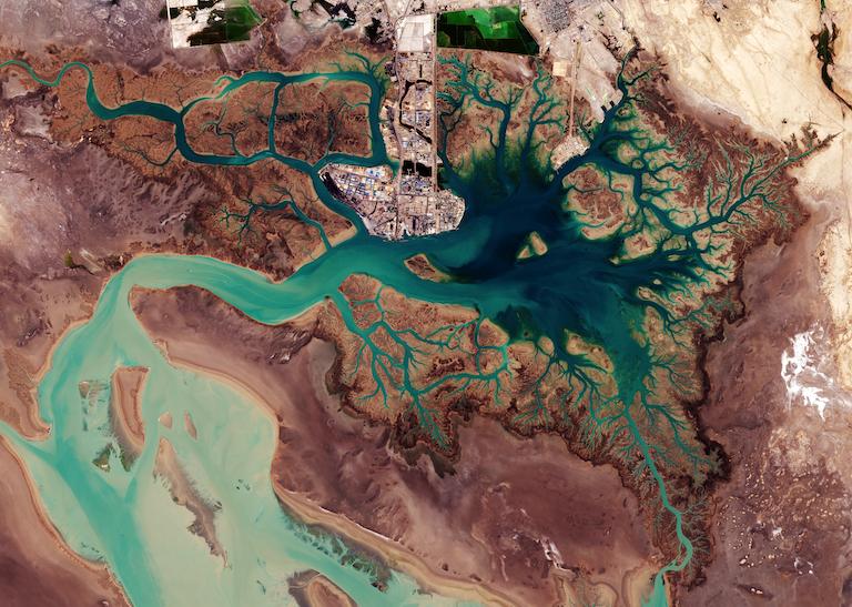 Le côté gauche de l'image est dominé par les marais et les vasières du Shadegan Wildlife Refuge, la plus grande zone humide d'Iran, et une zone humide Ramsar d'importance internationale La zone fournit un habitat d'hivernage pour une grande variété d'oiseaux migrateurs, et est le plus site important au monde le canard marbré (Marmaronetta angustirostris). Image de l'Agence spatiale européenne via Wikmedia Commons (CC BY-SA 3.0 IGO)