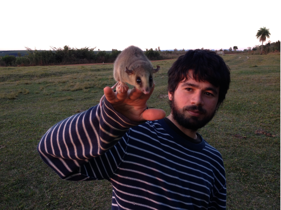 Pastor E. Perez is holding a mykureí, Marmosa (Micoureus) paraguayana, a small Neotropical marsupial, in Paraguay's Tapytá Nature Reserve. Photo by Noé U. de la Sancha.