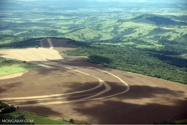 Cerrado clearing for agriculture. Image by Rhett A. Butler/Mongabay.