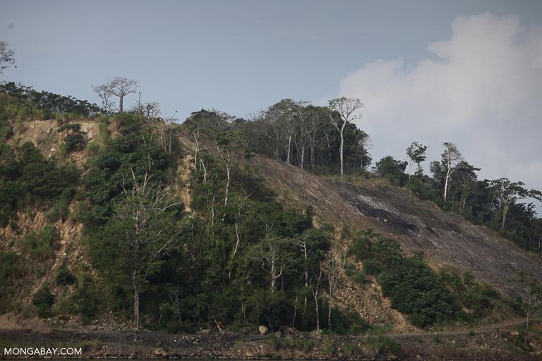 Deforestation in Panama. Image by Rhett A. Butler/Mongabay.