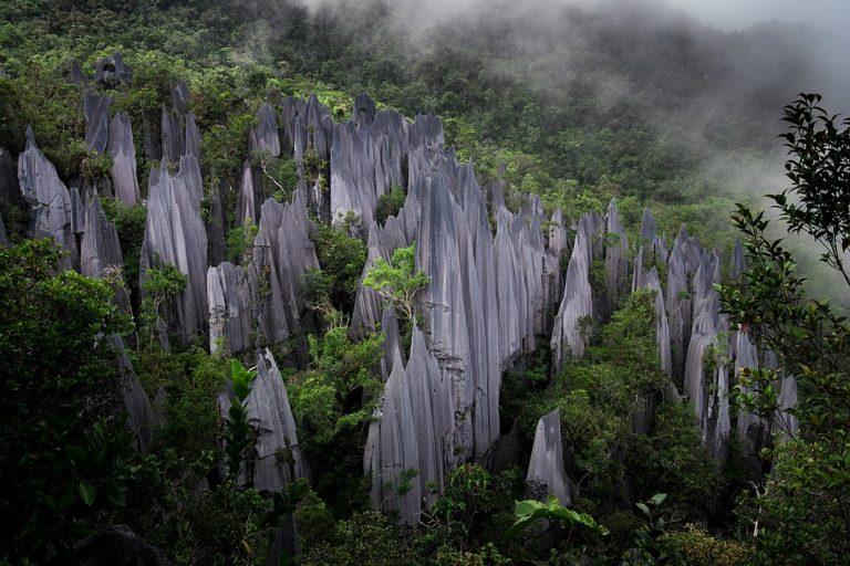 The limestone pinnacles of Mount Api, inside Gunung Mulu National Park. Image by Gurazuru via Wikimedia Commons (CC BY-SA 4.0).