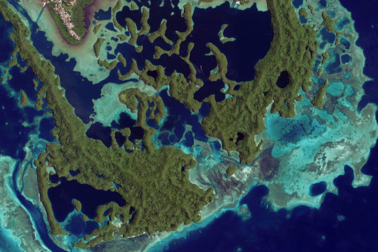 Satellite image of lagoons and reefs in Palau. Credit: Microsoft Zoom Earth
