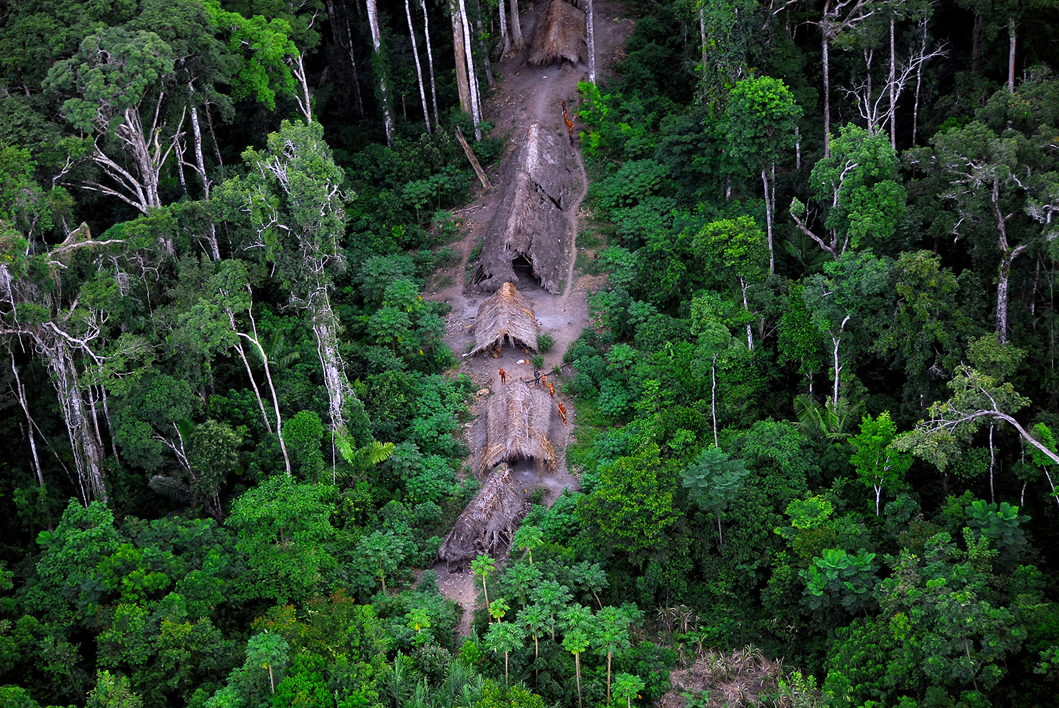 Voluntarily isolated people in the Javari Valley in the Brazilian Amazon. Photo credit: FUNAI.