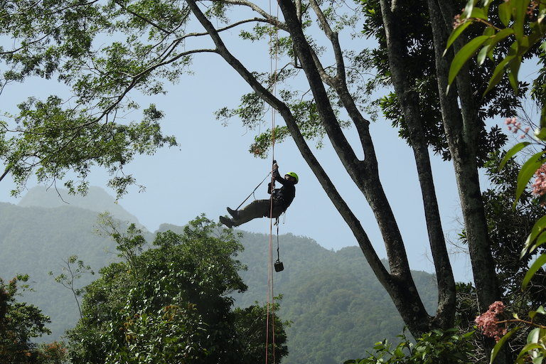 Castañeda deploying an acoustical monitoring device in Honduras. Image by Panthera.