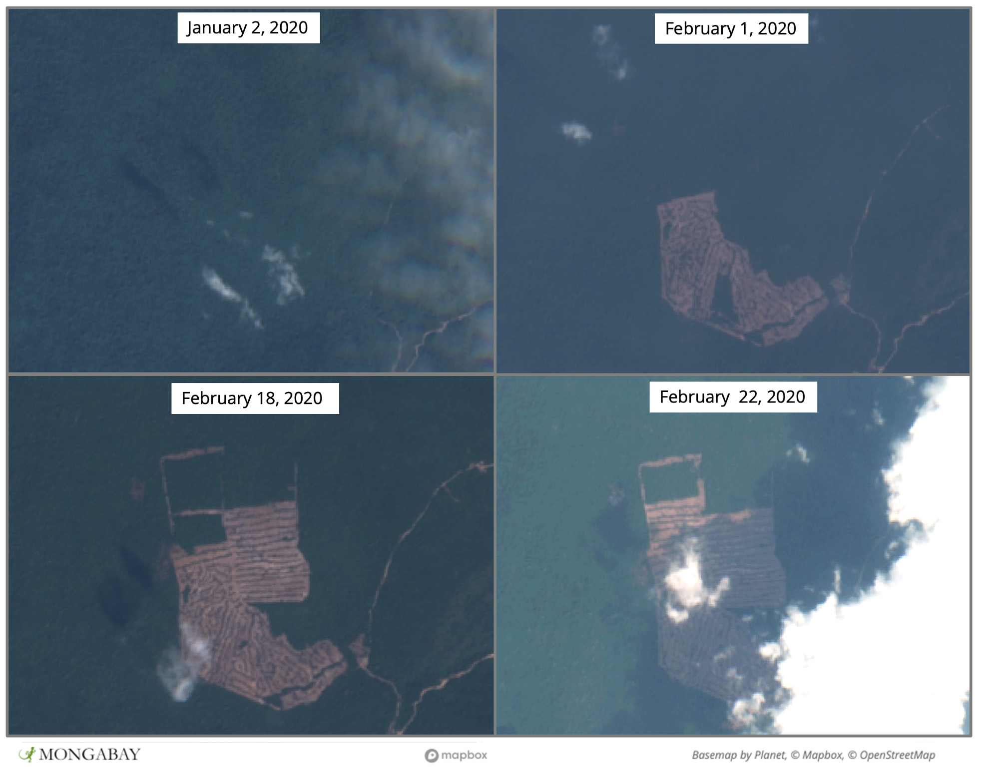 Satellite imagery shows rapid, recent clearing in the northern portion of Bokor National Park.