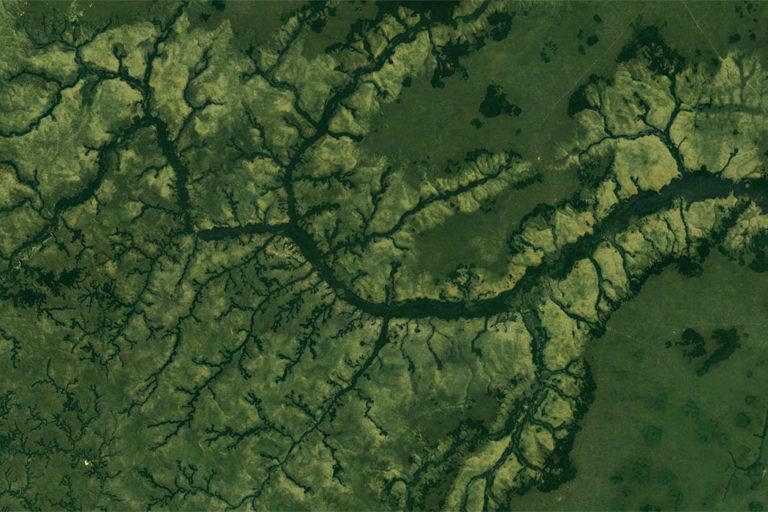 Satellite image of Reserve de chasse de la Lefini in Republic of Congo. Photo credit: NASA Landsat