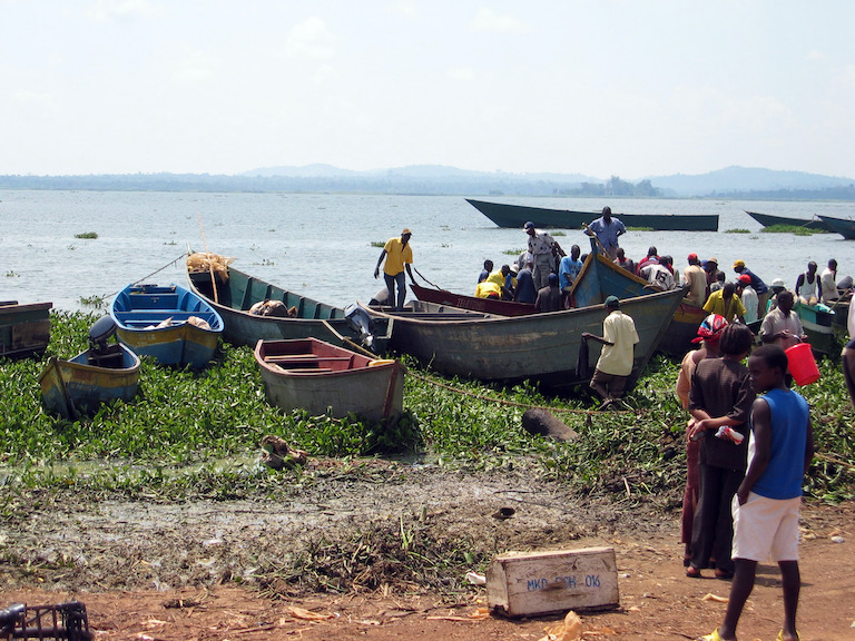 Ugandan fishers and their boats on the shores of Lake Victoria. Image by sarahemcc via Wikimedia Commons (CC BY 2.0).