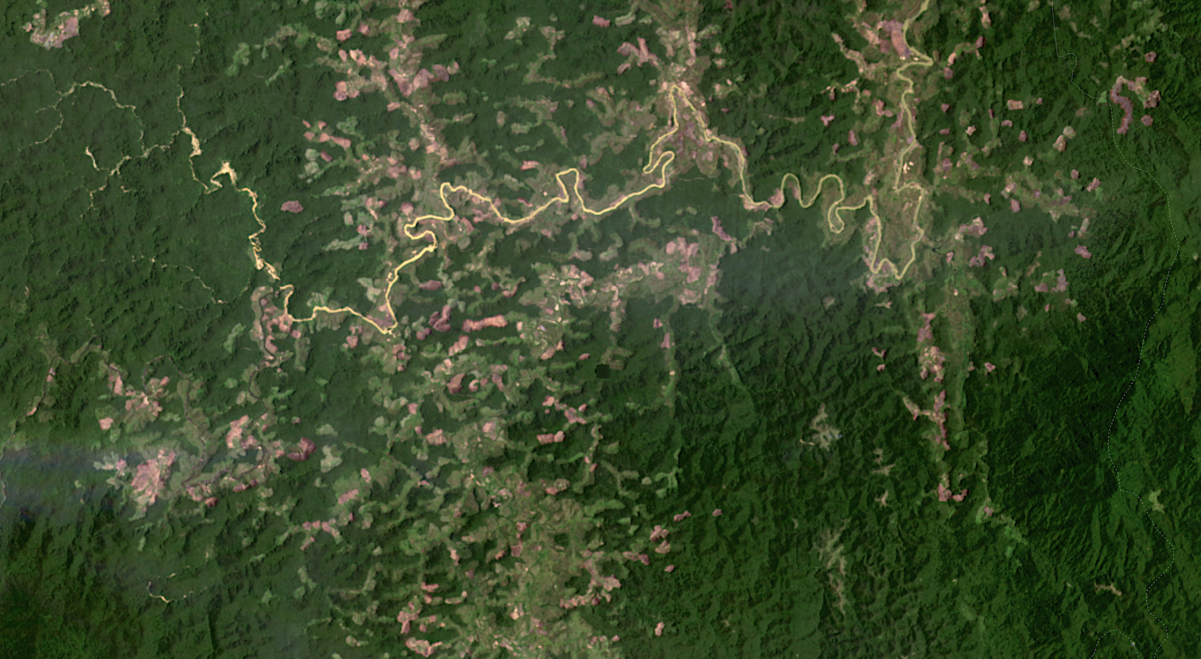 Satellite imagery captured in December 2020 shows many new clearings cutting into rainforest in CAZ. Image from Planet Labs.