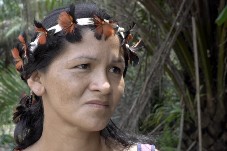 On November 12, 2019, Indigenous leader Uhu Tembé told Mongabay in village of Yriwar in the Turé-Mariquita Indigenous Reserve how she and her husband seized a Biopalma tractor during a protest and used it to bulldoze oil palm trees near hear house. Image by Thaís Borges for Mongabay.