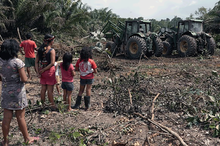 Residents of Yriwar village watch Biopalma's seized tractors knocking down palm trees a few meters away from their house. Image by Thais Borges.