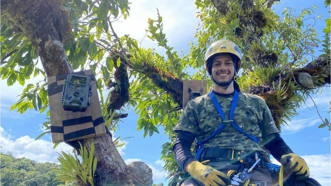 Mateo Giraldo-Amaya installing camera traps to photograph raptors nesting high in the forest canopy. Image courtesy of Felipe Barrerra.