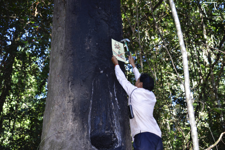 Ouch Leng nails a sign prohibiting logging in Prey Lang Wildlife Sanctuary. Image courtesy of the Goldman Environmental Prize.