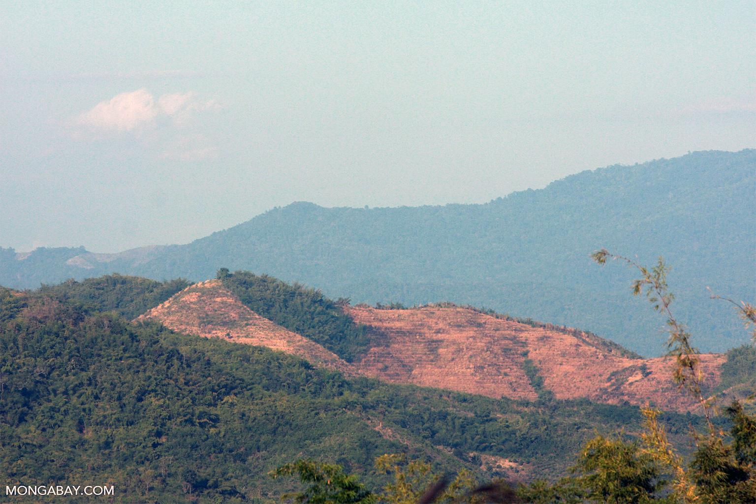 Deforestation in Myanmar