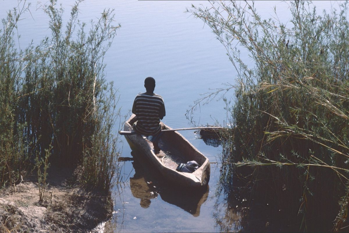 Lone figure in dugout canoe emerging from reeds on river. Image by Patrik M. Loeff via Flickr (CC BY-NC-ND 2.0)