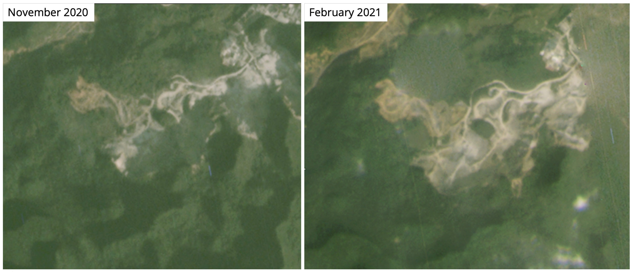 Satellite imagery shows what appears to be quarrying expanding into an area of primary forest where an estimated 80 Delacour's langurs are thought to live.