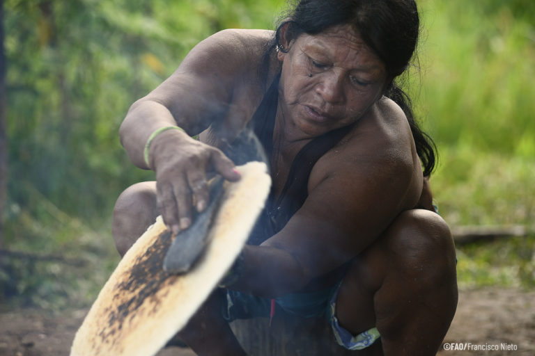 Over the past two decades, a range of programs and policies in Latin American and the Caribbean have been introduced to secure Indigenous land rights and make use of Indigenous knowledge in forest management. Image by Francisco Nieto/FAO.