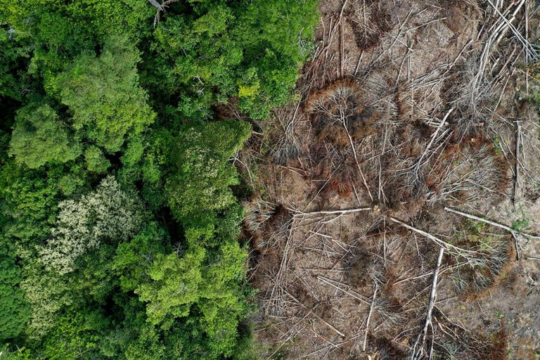 Deforestation in Kapuas Hulu regency, West Kalimantan, Indonesia. Photo by Rhett A. Butler