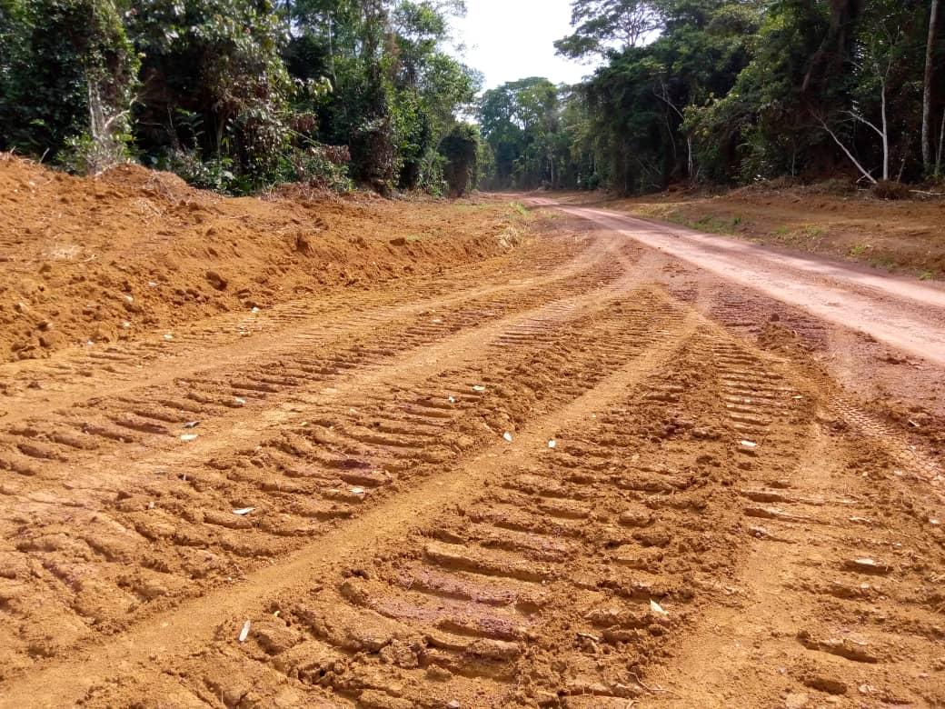 Caterpillar tracks on new, unpaved road near Massaha, Gabon. Image by Walter Mbamy for Mongabay.
