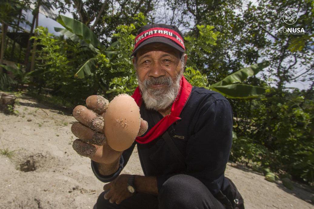 Eli, a Haruku Kewang, is helping protect a local population of gosong birds. Photo credit: EcoNusa/Victor Fidelis