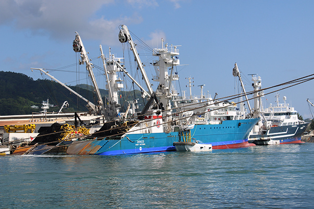 Purse seine vessels at a port in Victoria, Seychelles. Image courtesy of Rassin Vannier/Seychelles News Agency.