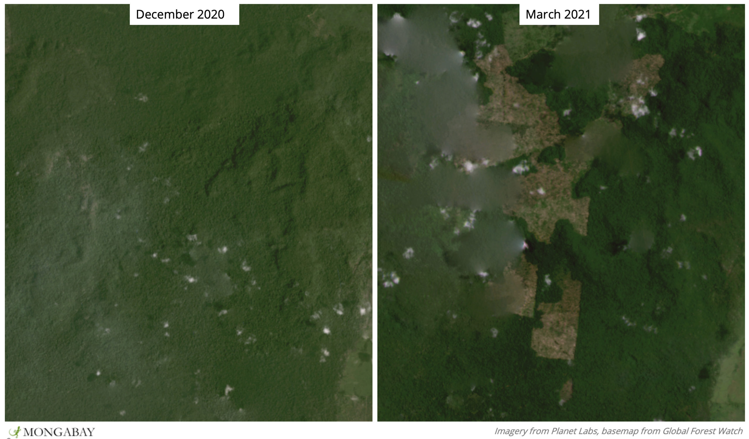 This area appears to have been cleared earlier this year, and is near Triunfo do Xingu's border with the Terra do Meio Ecological Station.