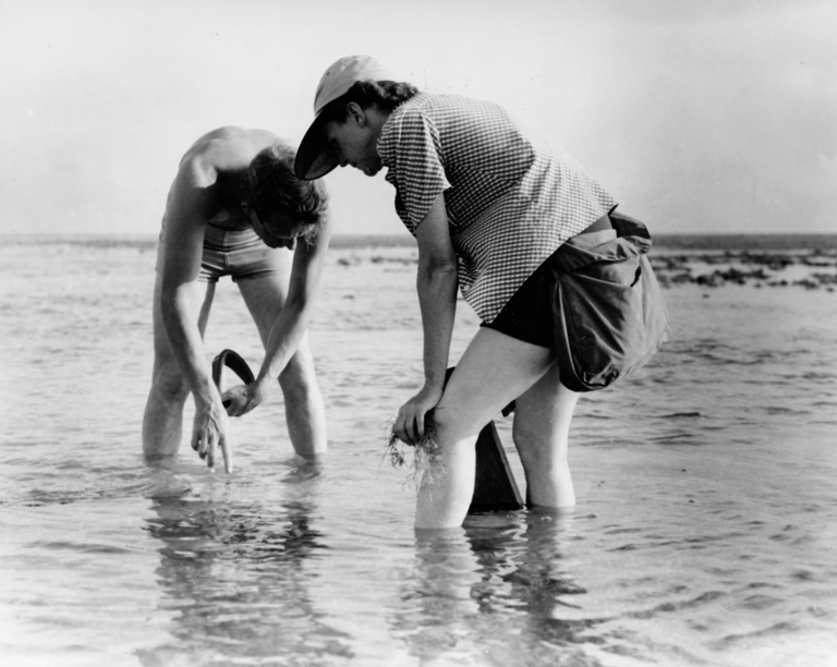"Rachel Carson, author of ""Silent Spring."" Image courtesy of U.S. Fish and Wildlife Service via [Wikimedia Commons] (Public domain)."