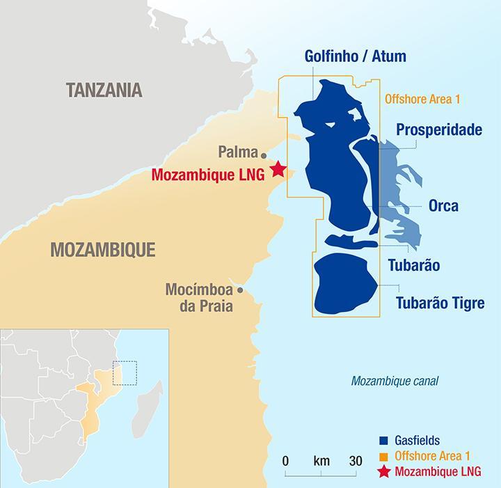 Total Afungi Site Map