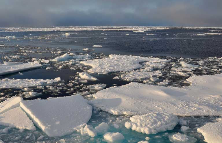 Arctic sea ice breakup. The more the Arctic warms, the thinner the ice, and the more habitat changes. Image by Patrick Kelley / US Coast Guard.