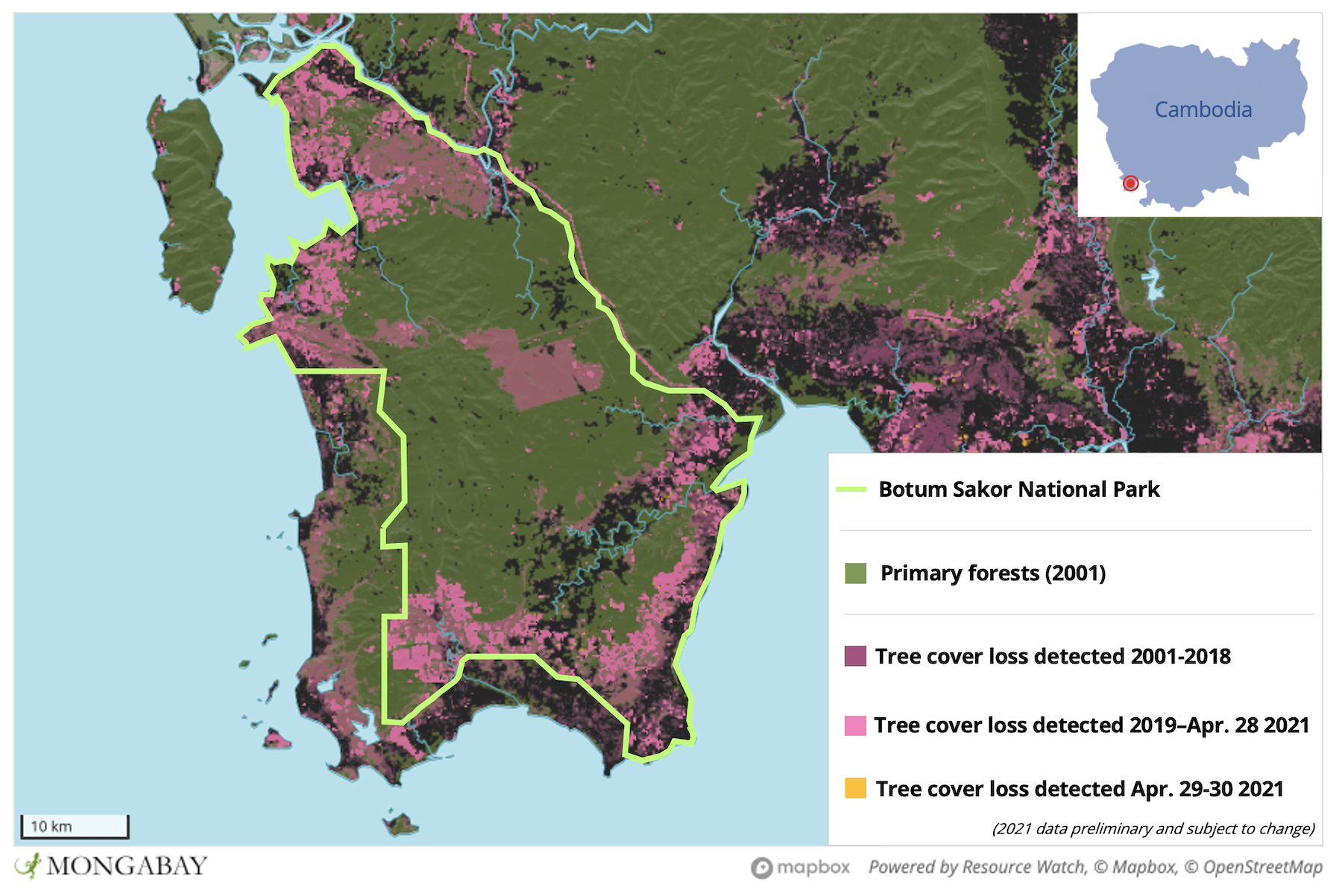Satellite data show large areas of Botum Sakor National Park have been cleared over the last two decades.