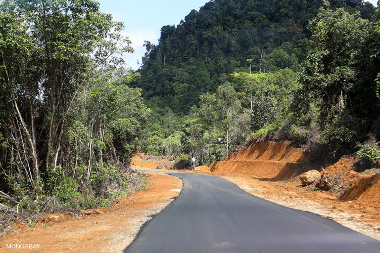 Road in Indonesian Borneo. Photo credit: Rhett A. Butler