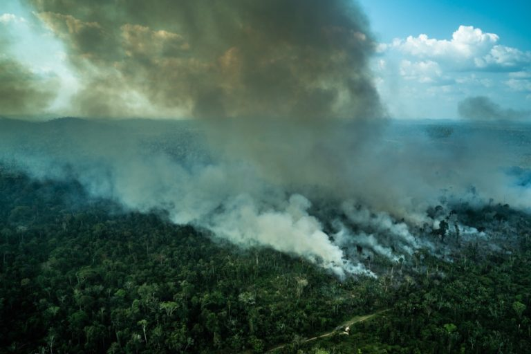 Burning forest in Rondonia in 2020. Photo credit: Fabio Nascimento