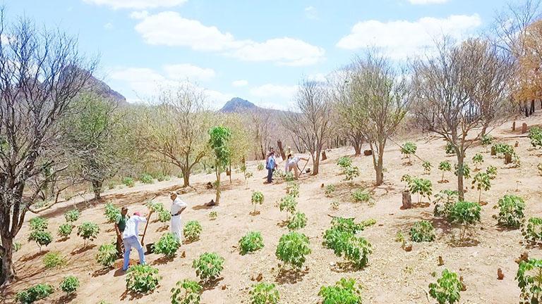 Taking soil samples in Peniel, Roboré, Bolivia. Photo credit: Enrique Roda