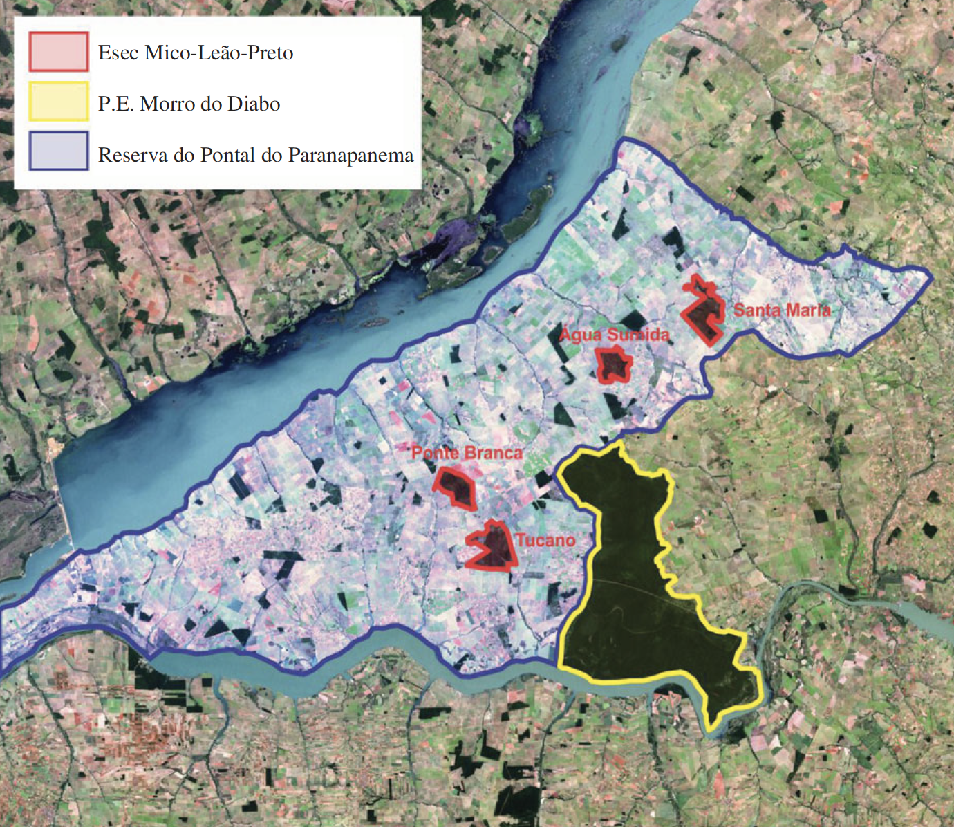 The location of the Pontal do Paranapanema region (a) and conservation units in 2000 (b). The large forested area outlined in yellow is the Morro do Diabo State Park. The four fragments that compose the Black Lion Tamarin Ecological Station are outlined in red.