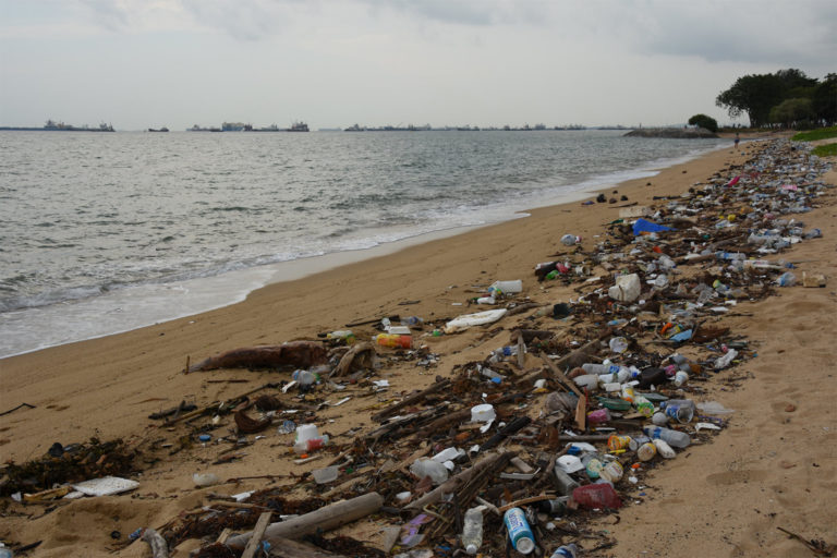 Litter in Singapore. So long as most plastics aren't easily biodegradable, their infiltration as microplastics into every part of the global environment will continue. Image by Vaidehi Shah via Flickr (CC BY 2.0).