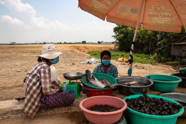 Roadside vendors selling fish and snails caught in Boeung Tamok. Image by Gerald Flynn for Mongabay.
