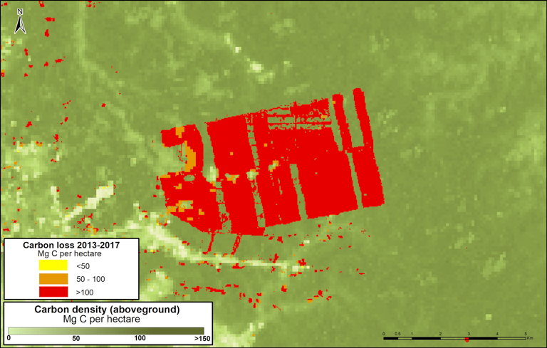 Aboveground carbon levels at the plantation site were very high. Image courtesy of MAAP with data from Asner et al. (2014).