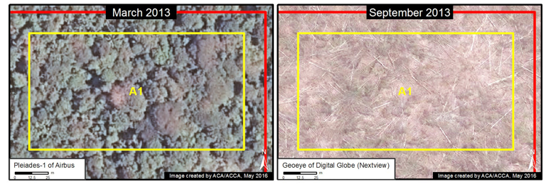Two images of the same area six months apart reveal the deforestation of intact forest. Image courtesy of MAAP.