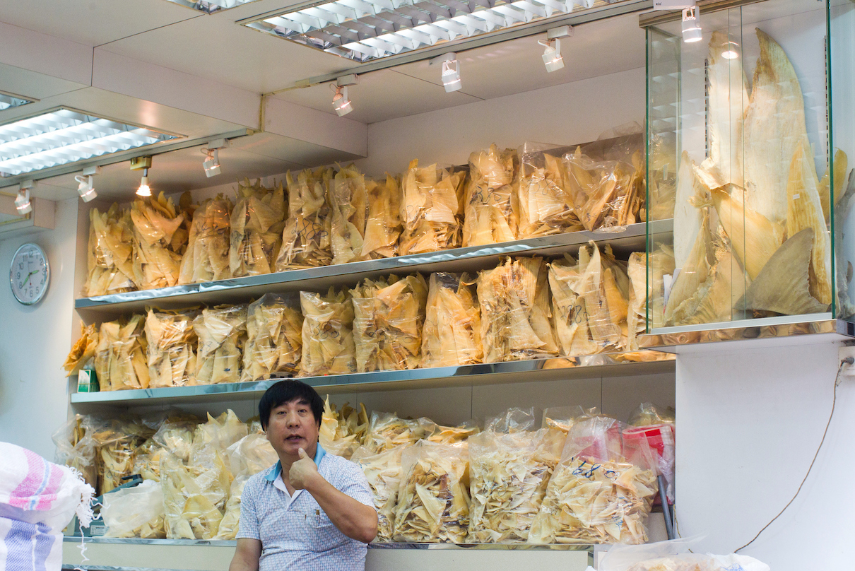 Shark fins on display in the Sheung Wan district of Hong Kong. Photo by Paul Hilton / Earth Tree Images.