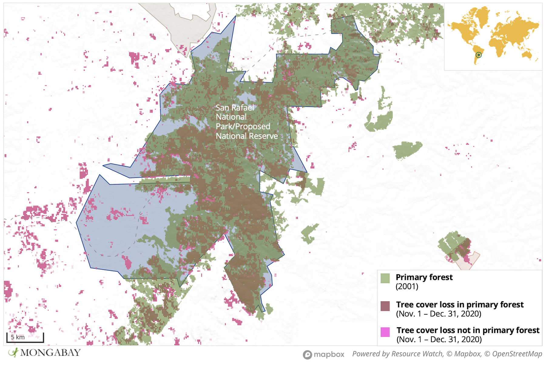 2020's fires burned a large proportion of San Rafael's primary forest.
