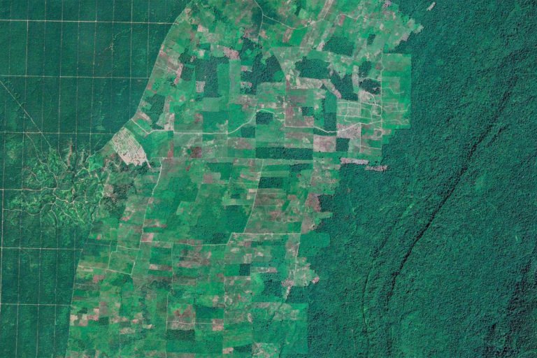 Satellite image of oil palm, agriculture, and forest in East Kalimantan, Indonesia. Image credit: Maxar Technologies.