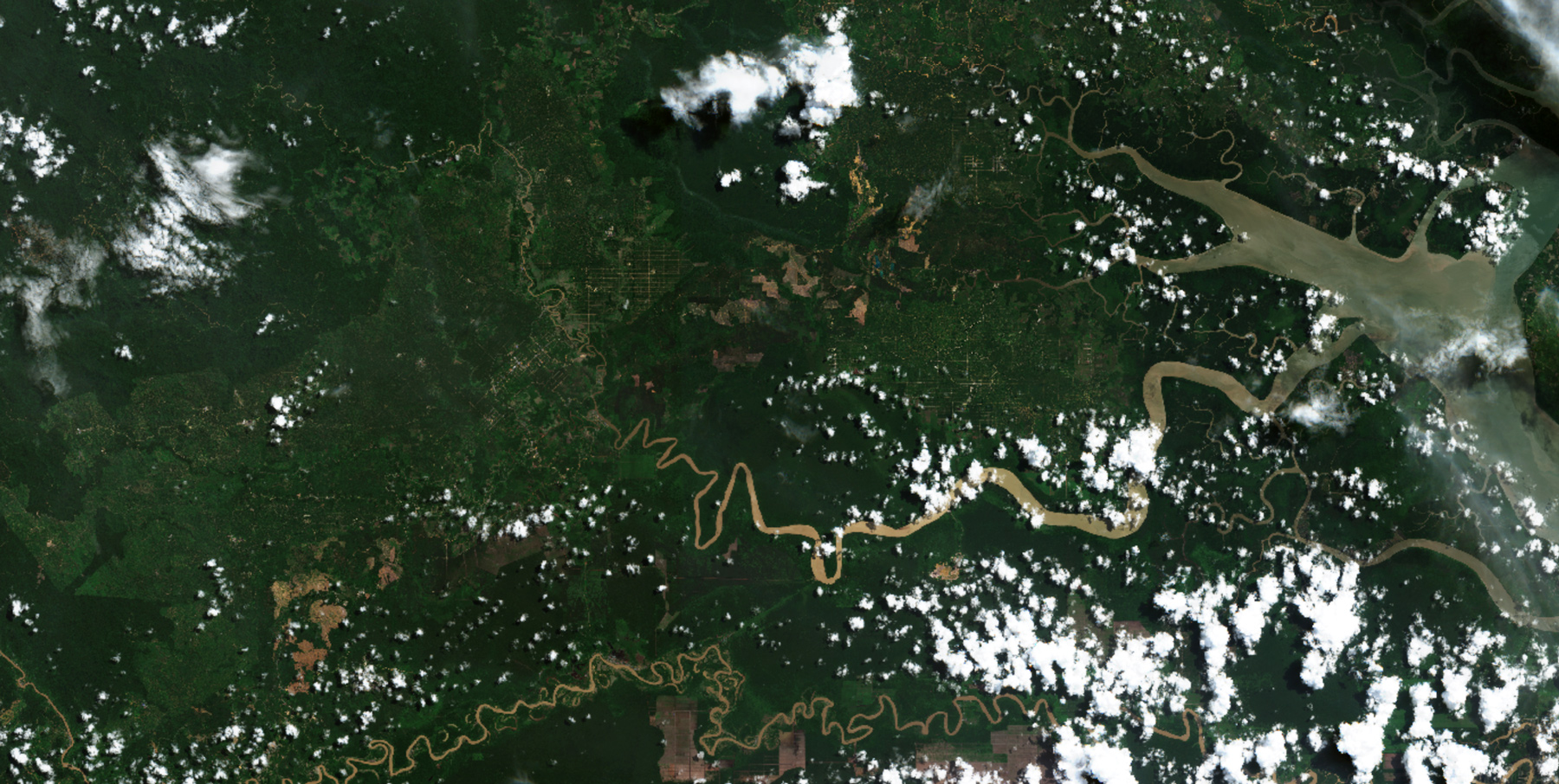 Copernicus Sentinel-2 image of North Kalimantan, Borneo, Indonesia, 2021, processed by the European Space Agency.
