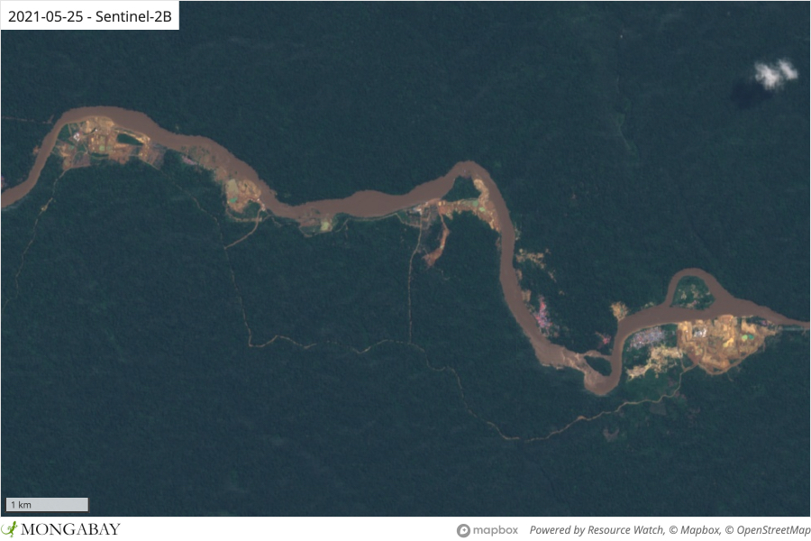 Satellite imagery shows what appear to be informal (and illegal) mining sites along the Epulu River in Okapi Wildlife Reserve.