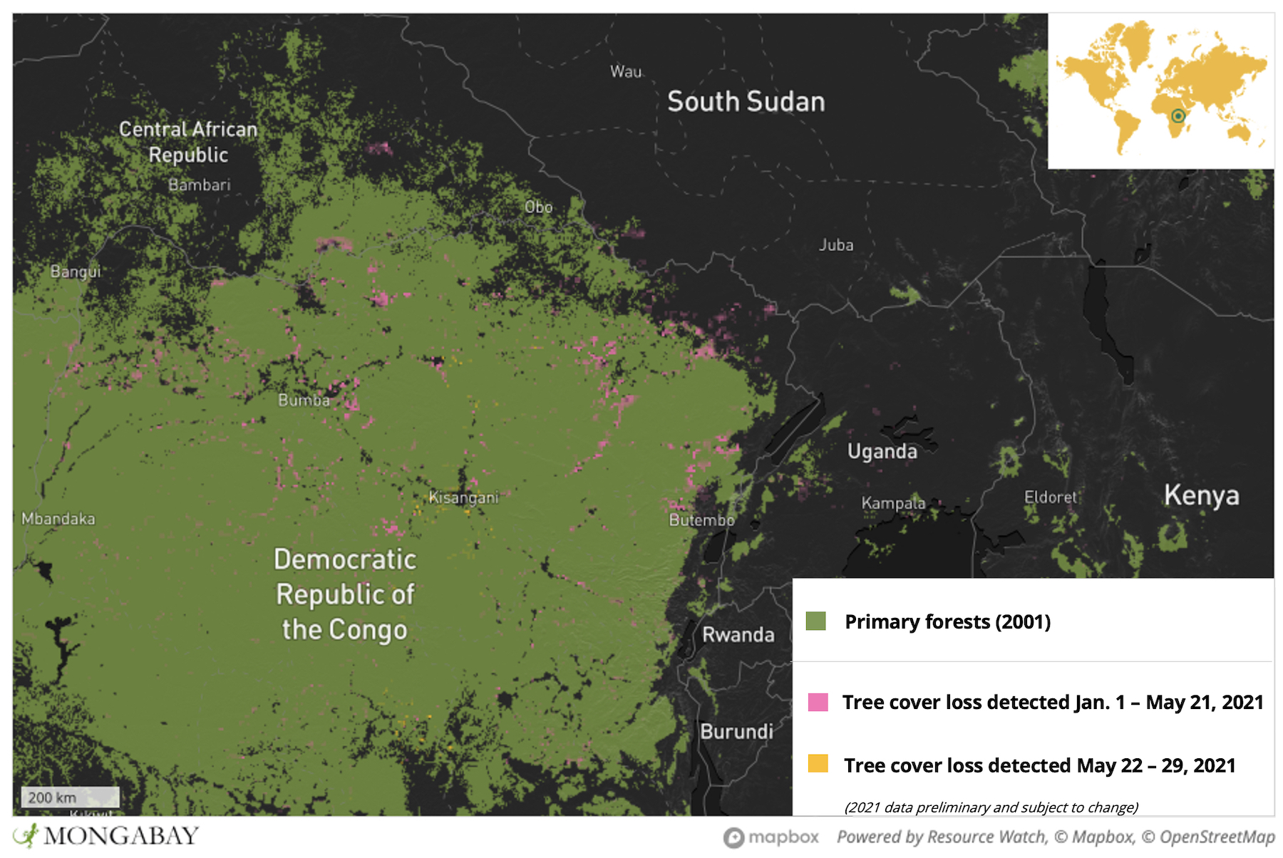 Much of this year's forest loss appears to be taking place in the country's northern portion, with the regions of Bas-Uélé, Mongala, Tshopo, Haut-Uélé and Ituri showing particularly high levels of deforestation activity. Even the DRC's reserves and parks are feeling the pressure, with satellite data and imagery showing recent incursions into forest that is supposed to be under official protection.