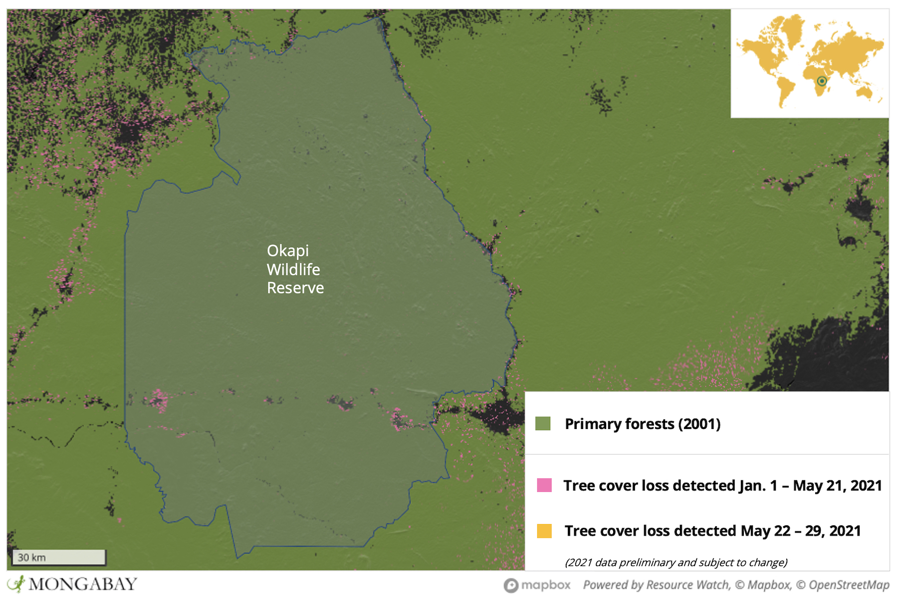 Most recent deforestation is taking place in the southern part of the reserve, where satellite imagery shows clearings proliferating along a road and river, and around settlements. The more remote northern portion is also experiencing a wave of expanding intrusions pockmarking ever-further into the rainforest.