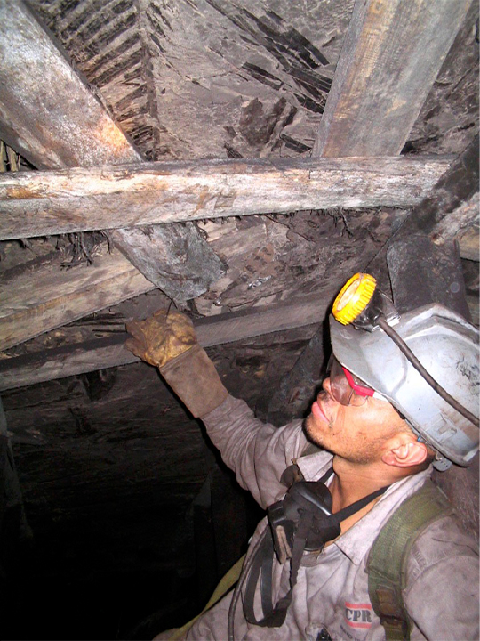 Mauricio Gutierrez, back then an undergraduate student at Universidad Pedagógica y Tecnológica de Colombia, collects fossil leaves within underground coal mines in Colombia.