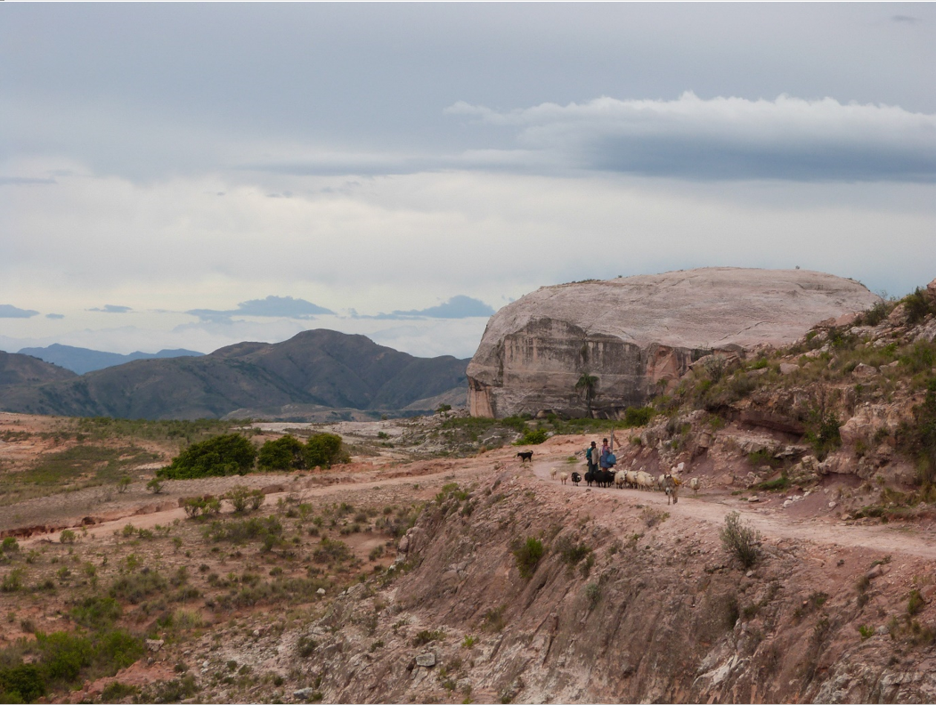 Small-scale herders with their sheep in El Palmar Integrated Management Natural Area. Image by Claire Wordley.