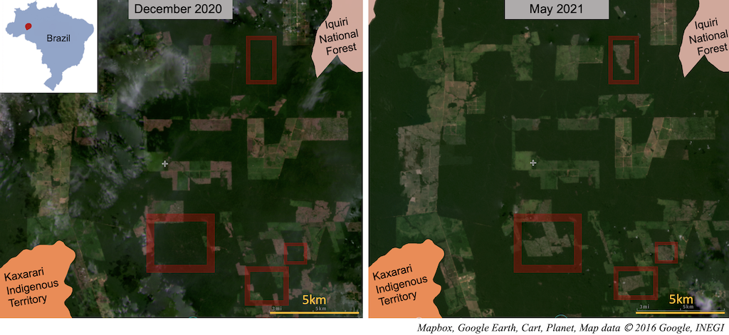 Satellite imagery from Planet labs shows deforestation between December 2020 and May 2021 in Lábrea, Amazonas state, Brazil. Screenshot from Global Forest Watch.
