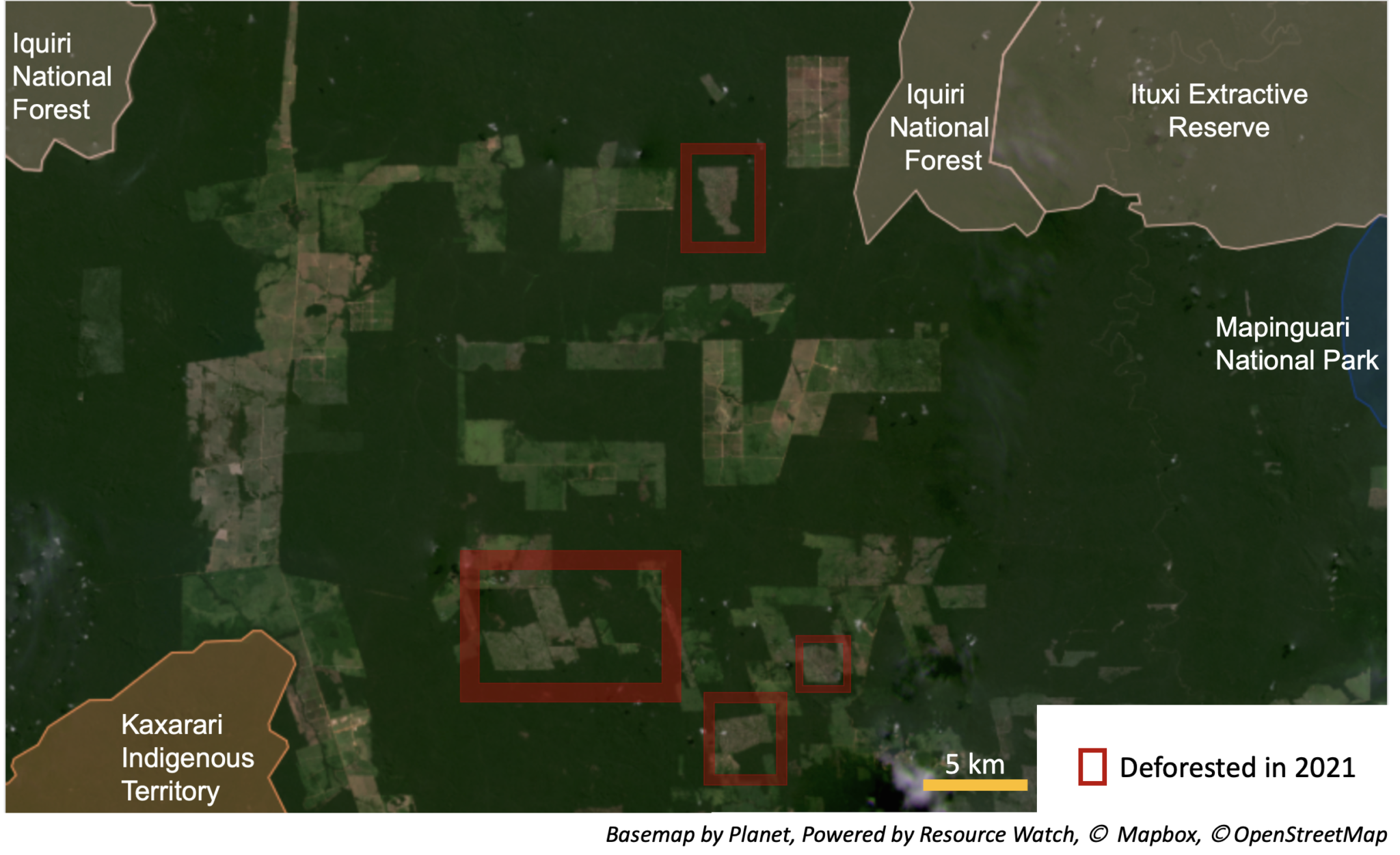 """Another view of the region shows recent deforestation amid the surrounding protected areas. Forest fragmentation can restrict the movement of animals among protected areas. The effects of deforestation also extend beyond the boundary of the cleared area, causing """"edge effects."""""""